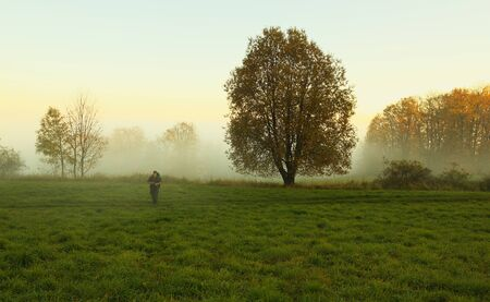 wayfarer: Alone wayfarer on the meadow with mist