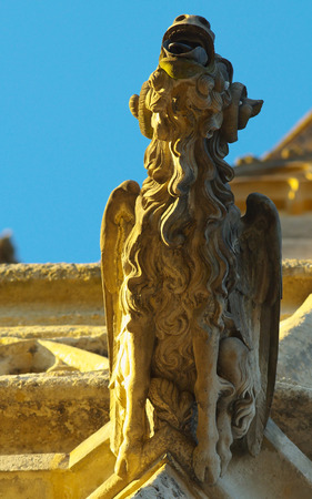 A gargoile on the gothic Saint Barbara Cathedral in town of Kutna Hora, Bohemia