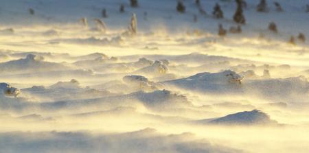 snowdrifts: Snowdrifts