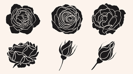 Rose ornament vector by hand drawing.Beautiful flower on brown background.Sunset memory rose vector art highly detailed in line art style.Flower tattoo for paint or pattern.