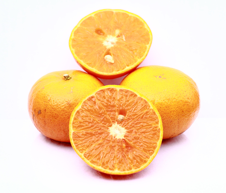 lit collection: Orange on white background
