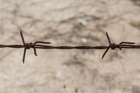 invade: close up of old barbed wire