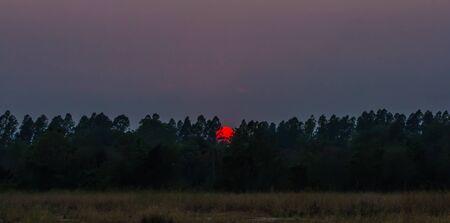 prairie: Landscape with sunset on the prairie.
