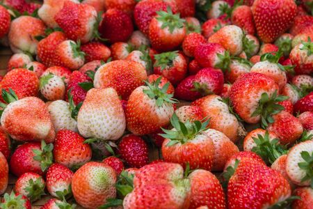 Red strawberry, Loosely laid strawberries in different positions.