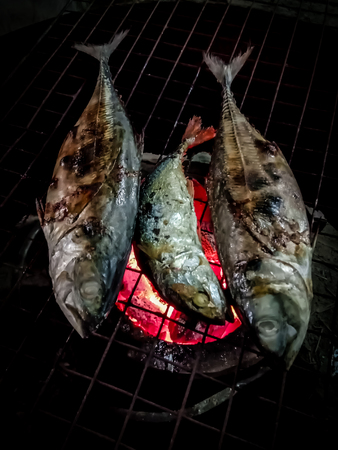 Grilled fish on the grill close up Stock Photo