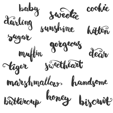 affectionate: Set of brushpen lettering and calligraphy affectionate nickname for your significant other with such word as baby, darling, sugar, biscuit and other. Template for invitations card for Valentines Day.