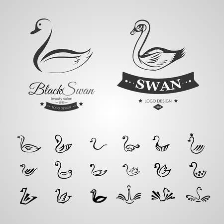 cisnes: Conjunto de 20 logotipo de croquis dibujado a mano de cisne negro aislado en el fondo de color blanco