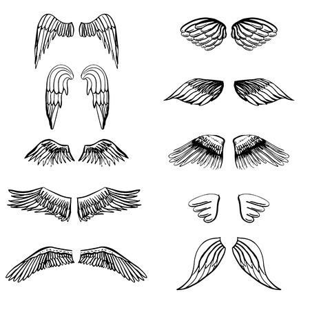 Wings illustratie silhouetten ingesteld voor het maken van uw eigen logo, badge, label ontwerp