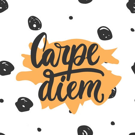 seize: Carpe diem - hand drawn lettering phrase means seize the day isolated on the white background. Fun brush ink inscription for photo overlays, greeting card or t-shirt print, poster design.