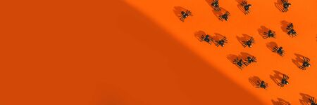 Halloween festive greeting card with spiders and shadow on a bright orange background. Postcard and scenery for All Saints Day. Top view. Flatlay. Copy space. Stok Fotoğraf