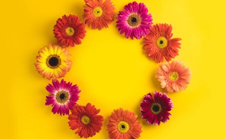 Bright beautiful gerbera flowers on sunny yellow background. Concept of warm summer and early autumn. Place for text, lettering or product. View from above, Copy space. Flatlay. Stock Photo