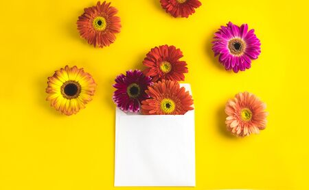 Bright beautiful gerbera flowers and paper card on a sunny yellow background. Mothers Day, Valentine holiday. Place for text, lettering or product. View from above, Copy space. Flatlay. Banco de Imagens - 129062696