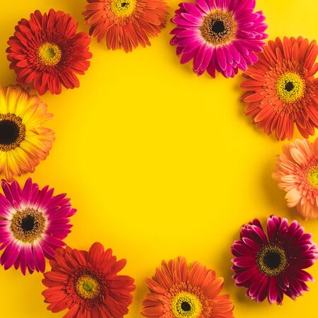 Bright beautiful gerbera flowers on sunny yellow background. Concept of warm summer and early autumn. Place for text, lettering or product. View from above, Copy space. Flatlay. 写真素材