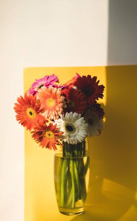 Bright beautiful red and yellow flowers bouquet of gerberas stand in glass vase on yellow background. Floral still life with shadow overlay. Stock Photo - 129062749