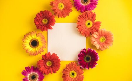 Bright beautiful gerbera flowers and paper card on a sunny yellow