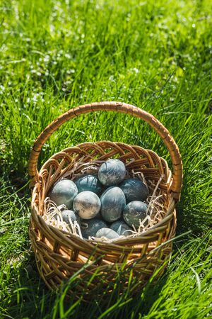 Painted blue textured easter eggs in a wicker brown hand made basket. The concept of the spring holiday and egg hunting