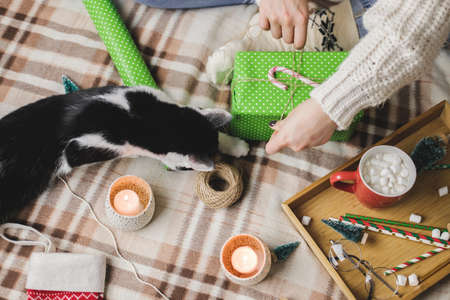 Young woman sits on plaid in cozy knitted woolen white sweater, socks and wraps Christmas gift in polka dot wrapping paper. Reklamní fotografie - 157232023