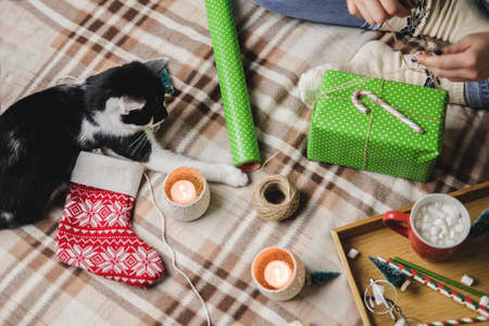 Young woman sits on plaid in cozy knitted woolen white sweater, socks and wraps Christmas gift in polka dot wrapping paper. Funny black and white tuxedo cat is playing nearby.