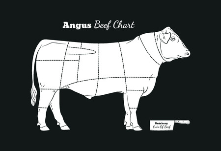 Butchery cuts of beef chart. Vintage style. For Butchery Shop or Meat Restaurant.
