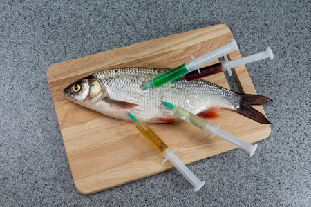 Raw fish, not cooked. Fish on a cutting Board riddled with syringes of drugs. Symbolizes the contamination of food, unnatural food.