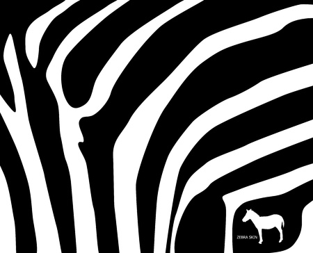 zebra skin vector Vector