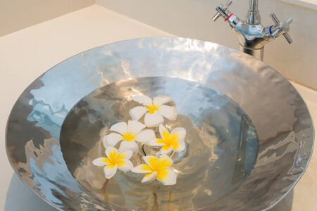 house float on water: Plumeria flower floating in water in the basin Stainless steel