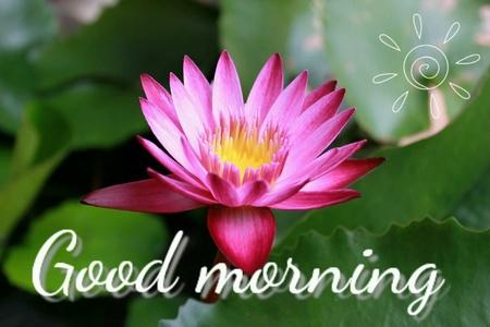 good: Good morning