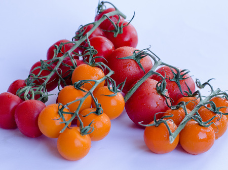 A variety of tomatoes in group on the vine on white background