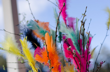 Traditional easter decoration made with twigs with colorful feathers on them with blue sky as background Stockfoto - 122873596