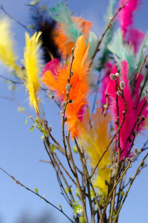 Traditional easter decoration made with twigs with colorful feathers on them with blue sky as background Imagens