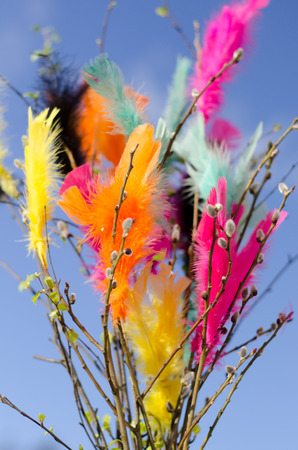 Traditional easter decoration made with twigs with colorful feathers on them with blue sky as background Stockfoto
