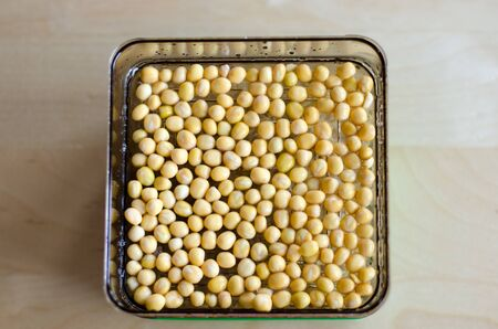 Chickpea sprouting in the making. Unfocused background. Day 1 Stockfoto