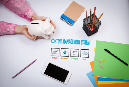 Content Management System Concept. Business woman with a piggy bank.