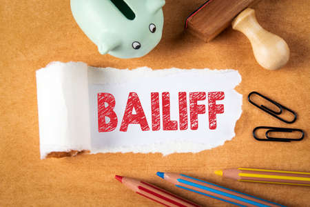 BAILIFF. Economic crisis, the rule of law, aid and repayment concept