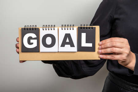 GOAL. Time planning, results and business concept