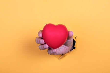 Red rubber heart. Health, care, disease and treatment concept. Womans hand