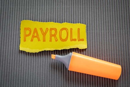PAYROLL. Business concept. Text on torn, colored paper on corrugated background Standard-Bild