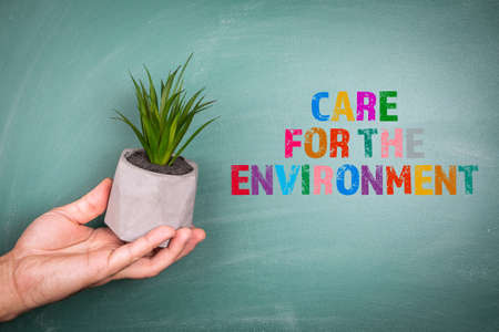 CARE FOR THE ENVIRONMENT. Plant with a flower pot in hand. Green chalk board