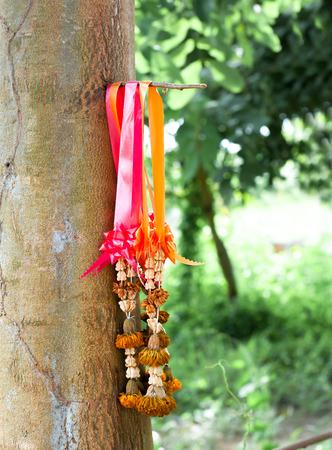 tree jasmine: dried jasmine garland hanged on a tree