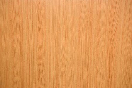 wood texture background: texture of wood background