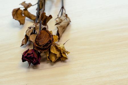 corazon roto: secado se levant� en el fondo de madera con espacio de copia Foto de archivo