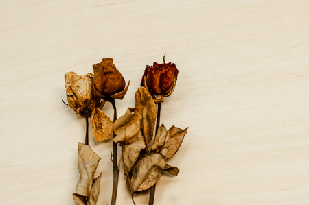 sad heart: dried rose on wood background with copy space