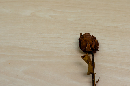 broken heart: dried rose on wood background with copy space