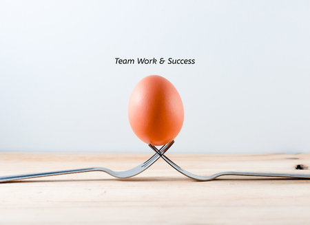 equipoise: Egg on the fork with text teamwork business concept