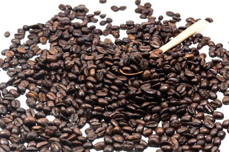 endorphine: Coffee bean seed in wooden spoon on white background, Coffee, Aroma, Caffeine, Coffee break, Coffee Wallpaper