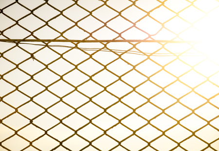 wire mesh: iron wire fence on sky background the with sunset