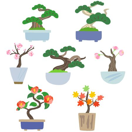 japanese house plant bonsai set