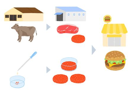 Production process of livestock and cultured meat Çizim