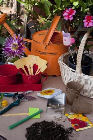 preperation: Gardening Preperation Stock Photo