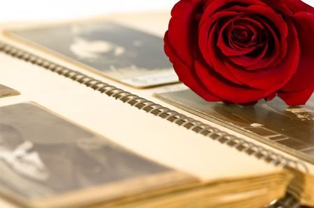 old photo album: Old photo album and red rose Stock Photo